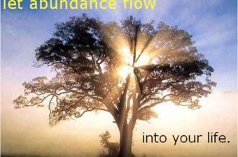 Cultivating Abundance & Your Divine Connection